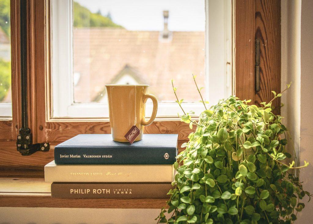 Vous préférez une fenêtre PVC ou bois ?